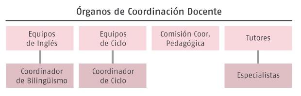 organos-de-coordinacion